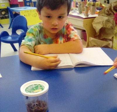 Young little kid boy observing and writing on a booklet at a Preschool & Daycare/Childcare Center serving Apex & Fuquay-Varina, NC